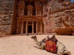 petra tour camel