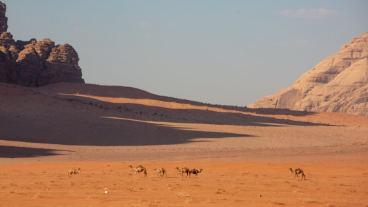 Petra and Wadi Rum 3 Day Tour from Tel Aviv and Jerusalem