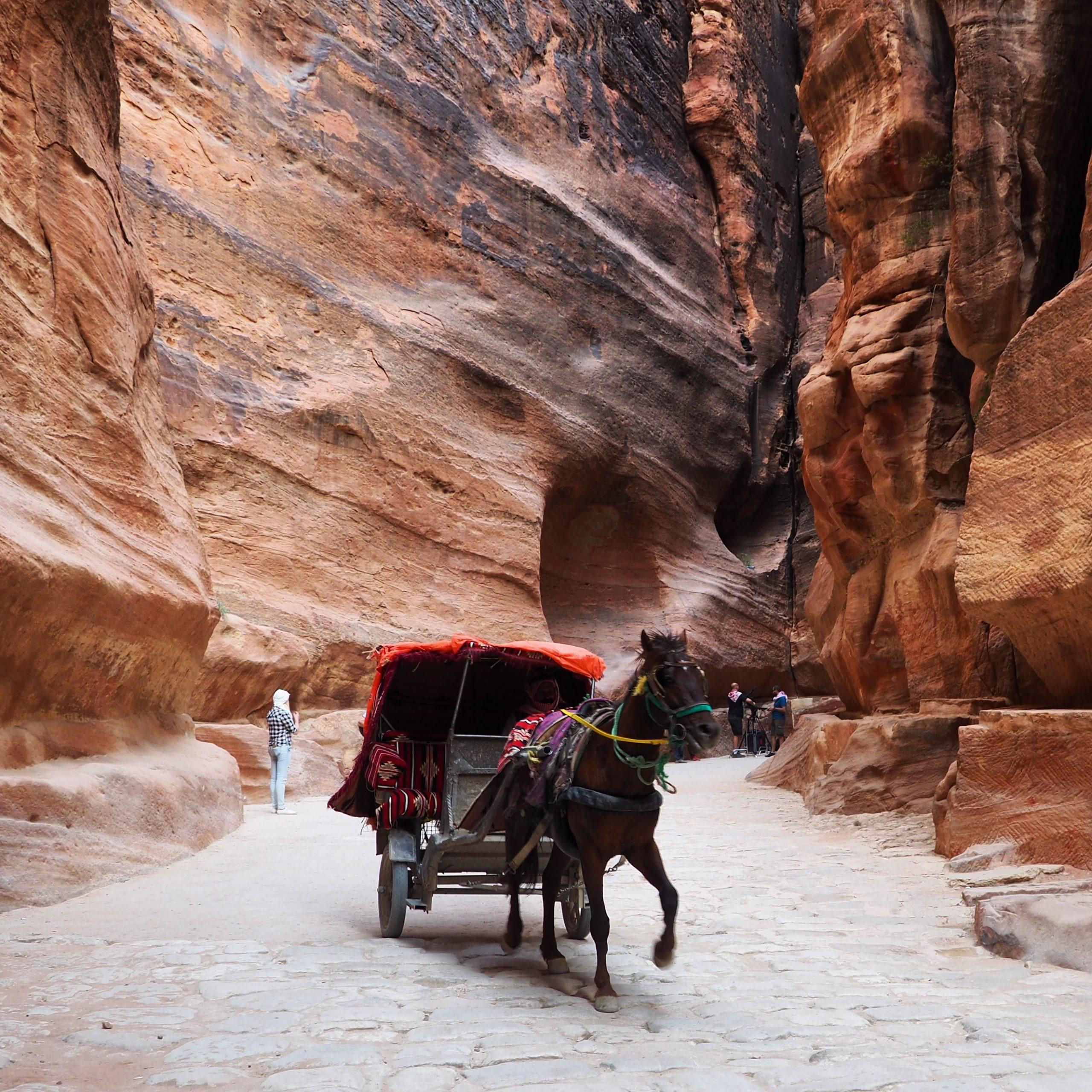 Petra, Jerash, Madaba, and Mount Nebo Tour from Jerusalem or Tel Aviv – 2 Days